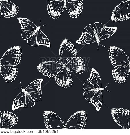 Seamless Pattern With Hand Drawn Chalk Great Orange-tip, Jungle Queens Stock Illustration