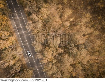 Aerial View Of Road In Beautiful Autumn Forest At Sunset. Beautiful Landscape With Empty Rural Road,