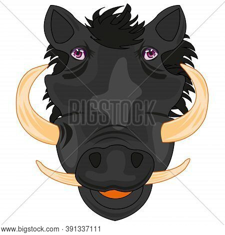 Wild African Ungulate Animal Wart Hog Mug