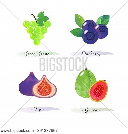 Organic Nature Healthy Food Fruit Green Grape Blueberry Fig Guava