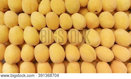 Apricot Background For Beautiful Wallpaper. Yellow Apricots For Fruit Background With Copy Space. Ab