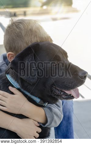 Boy Hugs Black Dog In Blue Collar Outside. Portrait Of Boy With Blond Hair And His Labrador. Love Fo