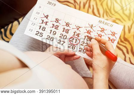 Young Pregnant Woman With Red Felt Tip Pen And Calendar. Young Pregnant Woman Counting Days With Cal
