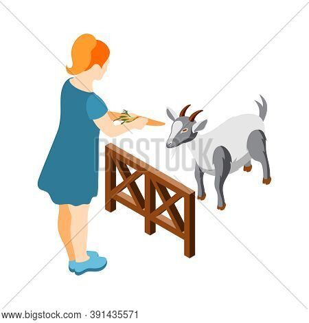 Contact Zoo Contact Farm Zoocafe Isometric Icons Composition With Woman Character Feeding Goat With
