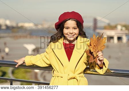 Farewell To Autumn. Last Autumn Beams. Fall Is In The Air. Ideas For Autumn Leisure. Kid Hold Maple