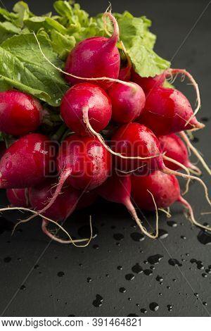 Bunch Of Radishes. Freshly Harvested, Red Colorful Radish. Growing Radish. Growing Vegetables. Healt