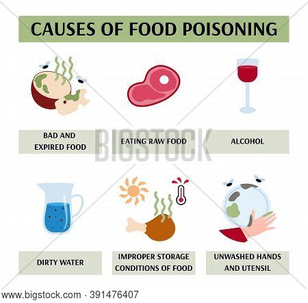 Vector Illustration Of The Causes Of Food Poisoning. Design Of A Medical Information Banner With Inf