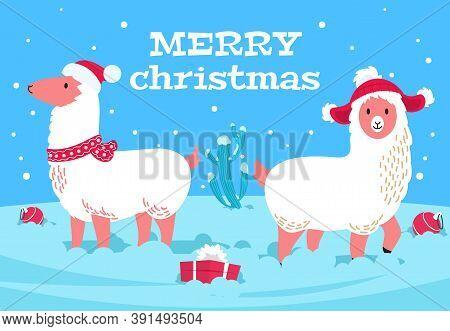 Christmas Alpaca. Holiday Llama Animal, Snowy Cactus. Xmas Lama Wear Scarf And Hats, Winter New Year