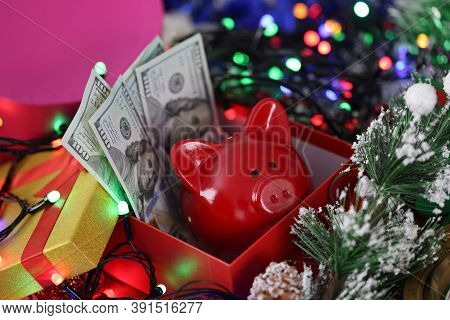 In New Years Box A Red Pig Has Dollars Next To Garland And Christmas Tree. New Year And Christmas Sa