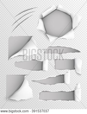 Transparent Paper Lacerated Sheet With Set Of Torn Holes With Rolled Edge Realistic Vector Illustrat
