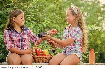 Organic Harvest. Kids Gathering Vegetables Nature Background. Summer Harvest Concept. Natural Harves