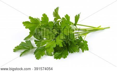 Fresh Bunch Of Green Parsley Isolated On White Background