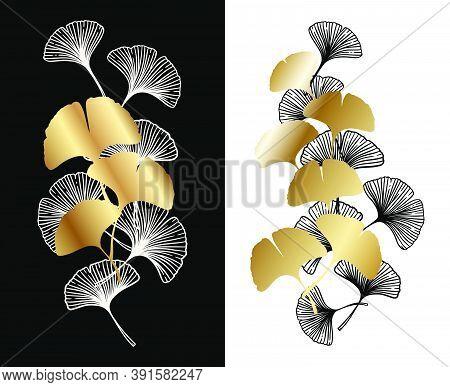 Ginkgo Or Gingko Biloba Golden Leaves Decoration Set. Nature Botanical Gold Vector Illustration, Dec