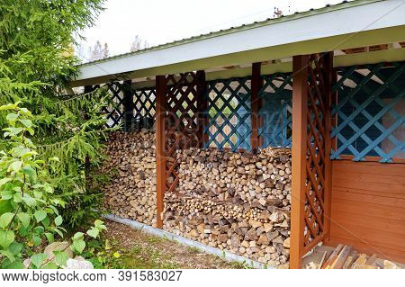 Firewood Of Various Tree Species Is Stored In The Woodshed. Concept Of Country Life