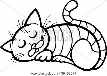 poster of Cartoon Illustration of Sleeping Tabby Cat for Coloring Book