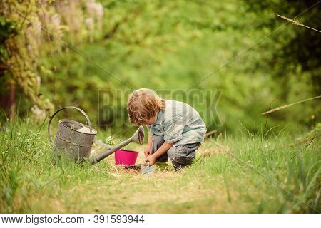 Planting Flowers. Growing Plants. Take Care Of Plants. Boy With Watering Can. Small Boy Child Love N