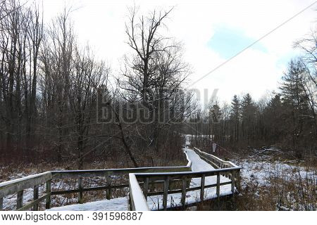 Snowy Boardwalk In Rattray Marsh, Mississauga, Ontario