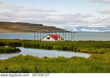 Lonely Farmstead In Iceland On A Coastline In Fjords At The West Of This Nordic Country