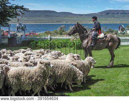 Riesco Island, Chile - December 12, 2008: Posada Estancia Rio Verde Working Farm. Shepherd On Horse