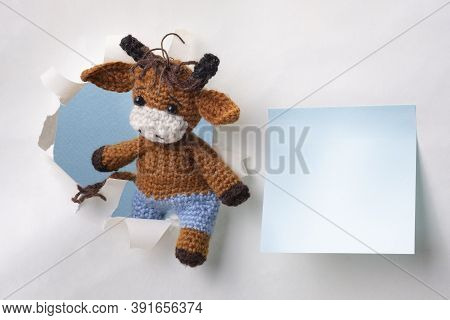 Knitted Bull Symbol Of 2021 Climbs Out Of The Hole. Blue Leaf For Text