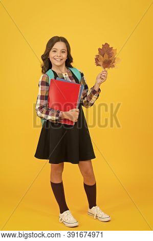 Learning Foreign Literature. Small Child Hold Literature Books And Autumn Leaves. Little Girl Go To