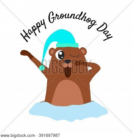 Happy Groundhog Day. Groundhog In A Hat Coming Out Of Its Burrow And Yawning.