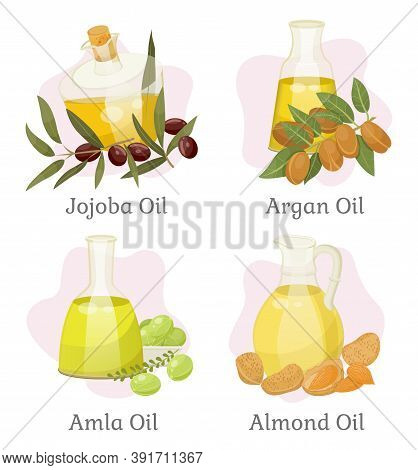Jojoba And Argan, Amla And Almond Hair Oils In Bottles Vector. Skin Care And Hair Treatment, Beauty