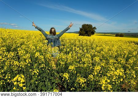 Farm Girl In Bumper Crop Of Canola Blooming In The Spring