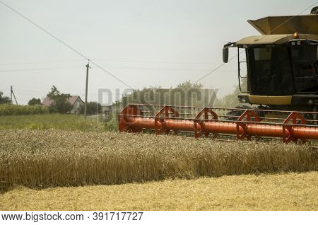 Combine Harvester Agriculture Machine Harvesting Golden Ripe Wheat Field. Agriculture. Combine Harve