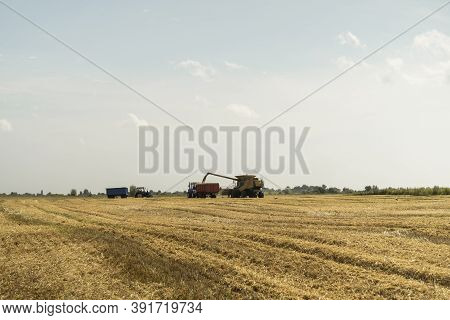 Combine Harvester Agriculture Machine Harvesting Golden Ripe Wheat Field. Harvester Combine Harvesti