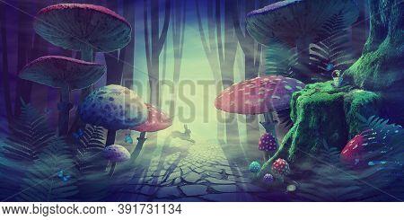 Fantastic Wonderland Forest Landscape With Road, Mushrooms, Ferns. White Rabbit Runs In The Fog Amon