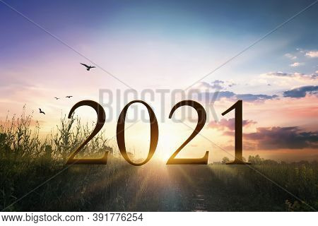 2021 Concept: Happy New Year 2021  On The Grass With Sunset Light