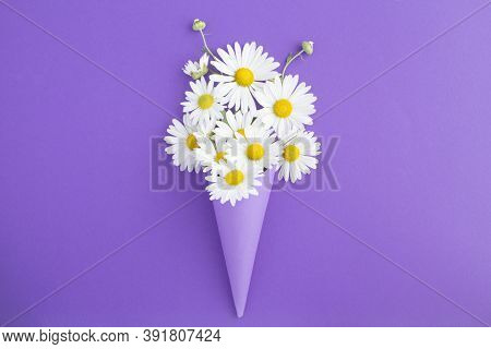 White Chamomiles In A Paper Violet  Cone On The Violet Background With Copy Space