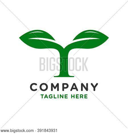Initial Logo Design Leaves T Or Brand