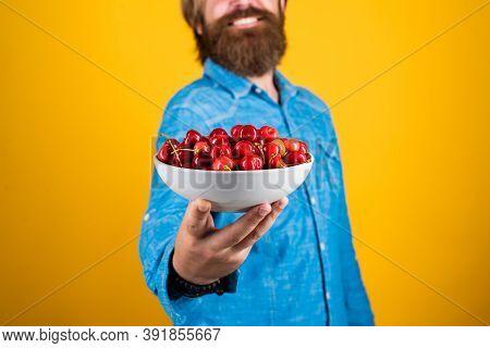 Fresh Red Sour Cherries Harvest In Plate. Seasonal Cherry Harvest In Industrial Orchard. Full Pot Of