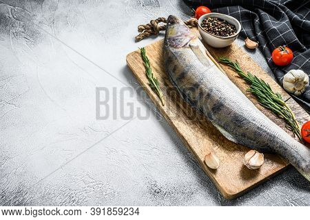 Zander, Walleye With Herbs. Raw Fish. Gray Background. Top View. Copy Space