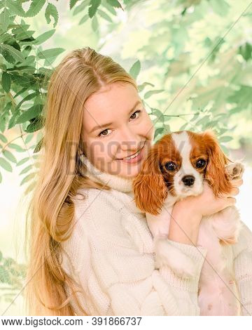 Portrait Happy Blonde Girl With Long Hair Holding Cute Purebred Puppy Cavalier King Charles Spaniel.