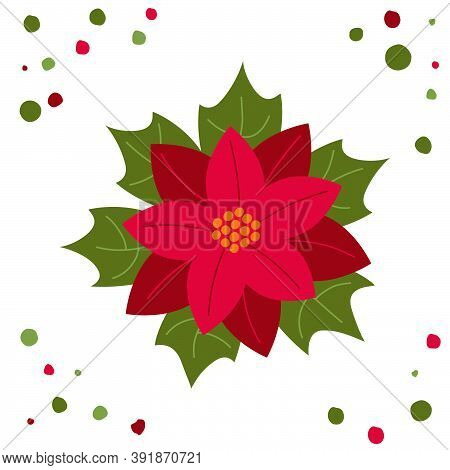Poinsettia Christmas Flower In Flat Style White Background