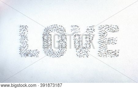 Love Word Made By People. Crowd Mob Of People Symbols Word Of Love. Team Social Concept. Flat Lay To