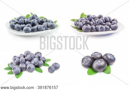 Group Of Bilberry Isolated On A White Cutout