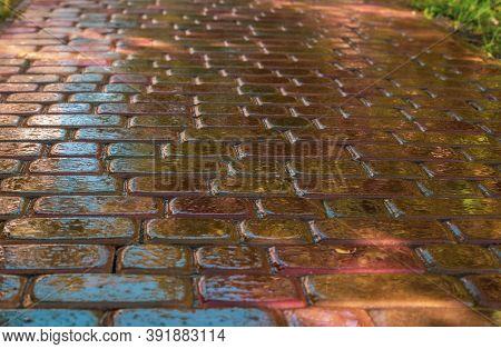 Pink Paving Slab After Rain For Background