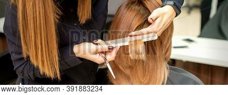 Back View Of Hairdresser Cuts Red Or Brown Hair To Young Woman In Beauty Salon. Haircut In Hair Salo