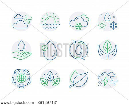 Nature Icons Set. Included Icon As Water Care, Fair Trade, Windy Weather Signs. Snow Weather, Organi
