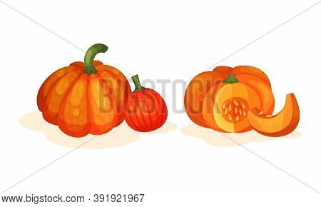 Round Pumpkin With Cut Section Showing Seeds And Pulp Vector Set