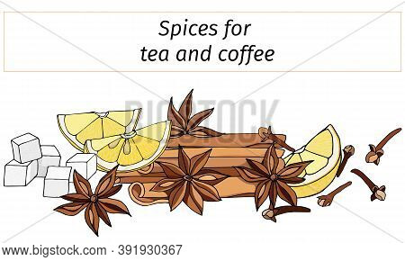 A Set Of Spices For Hot Winter Drinks: Cinnamon, Anise, Lemon And Vanilla. Vector Illustration Isola