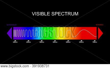 Spectrum, Visible Light Diagram. Portion Of The Electromagnetic Spectrum That Is Visible To The Huma
