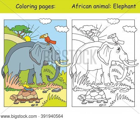Vector Coloring Pages With Cute Elephant In African Area. Cartoon Isolated Colorful Illustration. Co