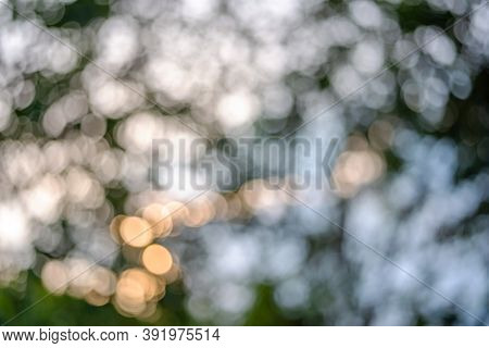Spring Light Bokeh And Blur For Background Design, Blurred Bokeh From Leaf And Sunlight For Backgrou