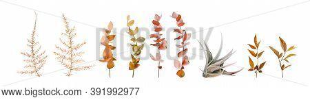 Vector Watercolor Floral Autumn Designer Element Set. Fall Colored Burnt Orange, Ocher Red Eucalyptu