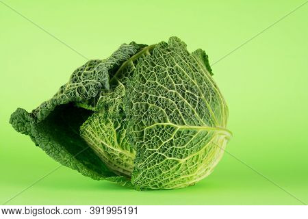 Savoy Cabbage, Tundra Cultivar, Often Mistakenly Called Kale In Serbia. Beautiful Outer Greenish-yel